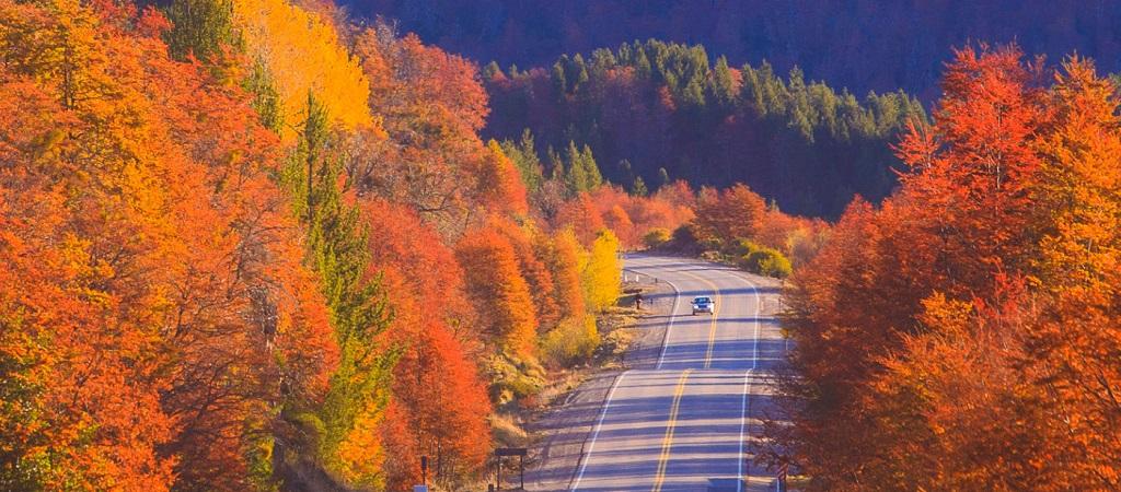 Cuatro Estaciones otoño